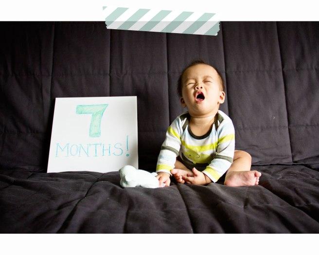 Preston-7-months