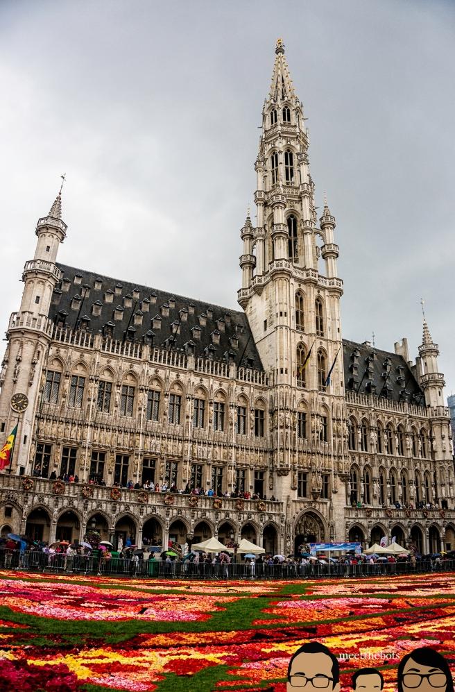 BelgiumFlowerCarpet_002_bots
