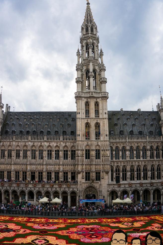 BelgiumFlowerCarpet_bots