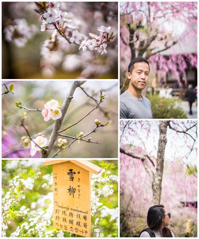 Kyoto_Garden